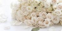 <b>Скидка до 78%.</b> Букет изпремиальных роз, синих орхидей, тюльпанов, ирисов или кустовых роз