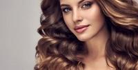 <b>Скидка до 74%.</b> Стрижка, укладка волос сконсультацией мастера, окрашиванием, мелированием, колорированием, полировкой, биоламинированием, химической завивкой или без всалоне красоты Pauline