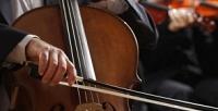 Концерт музыки для виолончели вантикафе &коворкинг «Хорошая республика». <b>Скидка50%</b>