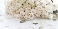 <b>Скидка до 78%.</b> Букет изпионов, премиальных роз, синих орхидей, тюльпанов, ирисов или кустовых роз