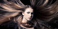 <b>Скидка до 50%.</b> Стрижка, тонирование, окрашивание или мелирование иукладка волос отсалона красоты «Лина»