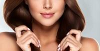 <b>Скидка до 77%.</b> Стрижка женская или мужская, окрашивание, карвинг, ламинирование или восстанавливающий уход для волос всалоне красоты «Ласточка»