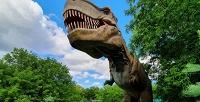 <b>Скидка до 50%.</b> Билет напосещение «Динопарка» всемейном парке «Сказка»