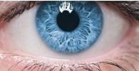 Лазерная коррекция зрения игоспитальный комплекс исследований для проведения операции вмногопрофильном медицинском центре им.Святослава Федорова (39336руб. вместо 89400руб.)