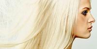 <b>Скидка до 71%.</b> Стрижка, полировка, окрашивание или ботокс для волос встудии красоты Trush