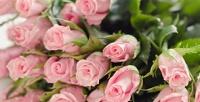 Подарочные букеты цветов намайские праздники встудии цветов «Ирис». <b>Скидкадо55%</b>