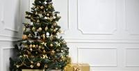 <b>Скидка до 40%.</b> Искусственные новогодние елки разной высоты