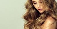 <b>Скидка до 75%.</b> Мужская или женская стрижка, укладка, SPA-уход, ботокс-восстановление, окрашивание, мелирование, тонирование волос всалоне красоты Nika-Style