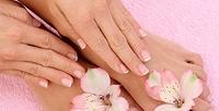 <b>Скидка до 71%.</b> Маникюр ипедикюр вместе или поотдельности спокрытием лечебным лаком либо гель-лаком всалоне красоты Beautyque