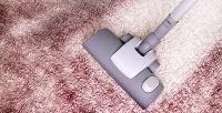 <b>Скидка до 50%.</b> Химчистка дивана, матраса или коврового покрытия отхимчистки «Чистый кот»
