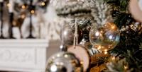 <b>Скидка до 50%.</b> Отдых вСочи напобережье Черного моря сзаездами сноября подекабрь или вновогодние праздники спроживанием вномере выбранной категории вотеле «Папайя»