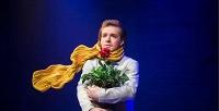 <b>Скидка до 50%.</b> Билет наспектакль «Маленький принц» оттеатра «Единство»