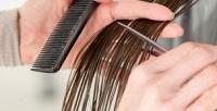 <b>Скидка до 80%.</b> Мужская или женская стрижка, укладка, стрижка бороды, окрашивание, мелирование, восстановление, лечение волос всалоне «Макки»