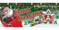 Билет на новогоднюю елку на ВДНХ с подарками, хороводами и катанием на лошадях сгруппой компаний «Столица». <b>Скидкадо60%</b>