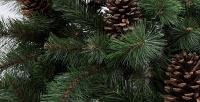 Новогодние елки высотой от60до300см. <b>Скидкадо55%</b>