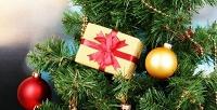 Новогодняя елка из датской ели и новогодние подарки. <b>Скидкадо72%</b>
