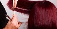 Стрижка, укладка, биоламинирование волос идругие услуги всалоне Berry. <b>Скидкадо80%</b>