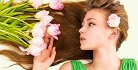 Женская стрижка, окрашивание идругие услуги всалоне красоты «Зеркало». <b>Скидкадо79%</b>