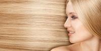 Женская имужская стрижка, спа-уход для волос, полировка волос идругое вwellness-клубе «Бенефит».<b>Скидка 60%</b>