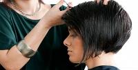 Комплекс парикмахерских услуг, стрижкой отстилиста, спа-уходом, окрашиванием или другими процедурами всалоне красоты Zara. <b>Скидка до82%</b>