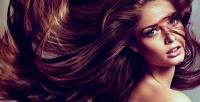 Стрижки Toni &Guy, омбре, балаяж, шатуш, botox, «Счастье для волос» идругие услуги всалоне Love Love Salon. <b>Скидкадо86%</b>