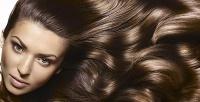 Женская или мужская стрижка идругие услуги навыбор всалоне «Бюро красивых услуг». <b>Скидкадо83%</b>