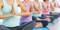 Абонемент на12занятий, 3или 6месяцев безлимитных занятий йогой встудии NaMi-Yoga. <strong>Скидкадо56%</strong>