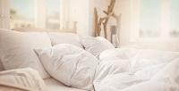 Экоподушки и одеяла Ecosilc с наполнителем из натурального шелка или кашемира. <b>Скидкадо81%</b>