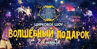 Билет на цирковое шоу «Волшебный подарок» в«Цирке чудес» с театральной компанией «Айвенго». <b>Скидка50%</b>