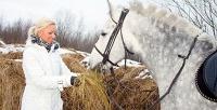 Конные прогулки, обучение верховой езде идругое вконном дворе «Белый берег». <b>Скидкадо70%</b>