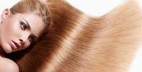 Стрижка, окрашивание и другие процедуры для волос в студии красоты «Моннро». <b>Скидкадо76%</b>