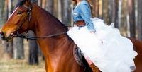 <b>Скидка до 61%.</b> 1или 2часа конной прогулки, романтическая либо квест-прогулка налошадях, катание налошадях для детей отконного двора «Хутор»