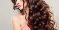 <b>Скидка до 56%.</b> Женская или мужская стрижка, укладка, мелирование либо окрашивание всалоне-парикмахерской «Багира»
