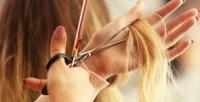 <b>Скидка до 65%.</b> Стрижка, окрашивание, ботокс, кератиновое выпрямление волос, оформление иокрашивание бровей всалоне красоты Naziko