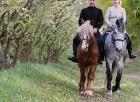 <b>Скидка до 61%.</b> Катание налошади сфотосессией или без, конная прогулка, уроки верховой езды отконного клуба «Ипподром»