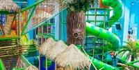 <b>Скидка до 50%.</b> Посещение скалодрома или детского лабиринта вбудние либо выходные дни впарке активного отдыха иприключений «Веселые джунгли»