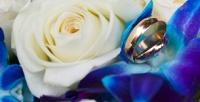 <b>Скидка до 79%.</b> Букет изсиних орхидей, гербер, тюльпанов, эквадорских или голландских кустовых роз навыбор