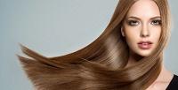 <b>Скидка до 60%.</b> Стрижка, полировка, нанесение SPA-маски, запечатывание кончиков «Жидким шелком», окрашивание волос встудии красоты Елены Сыкиной