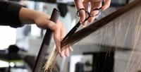 <b>Скидка до 78%.</b> Сложное окрашивание, кератиновое выпрямление, полировка или ботокс для волос всалоне «Эйфория»