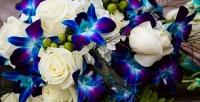 <b>Скидка до 80%.</b> Букет излазурно-синих орхидей, роз вэлитной упаковке или шляпной коробке или кустовых роз