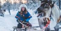 <b>Скидка до 50%.</b> Экскурсия «Знакомство ссеверными оленями иездовыми собаками хаски» откомпании WalkService