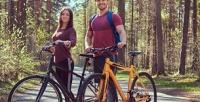 <b>Скидка до 59%.</b> Однодневный велотур «Отхаски дохаски» протяженностью 10км cпитанием вюрте, экскурсией ипосещением питомников хаски отпитомника «Бореалис»