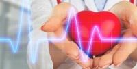 <b>Скидка до 71%.</b> Базовое или расширенное кардиологическое обследование либо снятие ирасшифровка электрокардиограммы вмедицинском центре «Иломед»