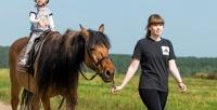 <b>Скидка до 50%.</b> Конная прогулка или обучение верховой езде в конноспортивном комплексе «Белая лошадь»