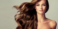 <b>Скидка до 75%.</b> Стрижка, окрашивание, мелирование, тонирование, питательные ивосстановительные процедуры для волос всалоне красоты «Особа»