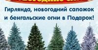 <b>Скидка до 86%.</b> Искусственная ёлка «Новогодняя красавица», «Сказка», «Олимпийская», «Сибирская» или «Кремлёвская Премиум»