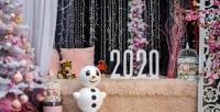 <b>Скидка до 94%.</b> Новогодняя романтическая, классическая, тематическая, семейная или VIP-фотосессия отфотостудии Pinkfotto