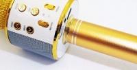 Беспроводной микрофон для караоке WS-858 (540руб. вместо 2000руб.)