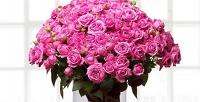 <b>Скидка до 86%.</b> Букет изроз, гербер, тюльпанов, орхидей, хризантем, гортензий, альстремерий, эустом, ирисов или роз вшляпной коробке