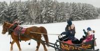 <b>Скидка до 50%.</b> Конная прогулка или обучение верховой езде вконноспортивном комплексе «Белая лошадь»